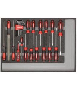 3301683 Σετ εργαλείων κατσαβίδια + λίμες μονάδα CT 25τμχ GEDORE RED